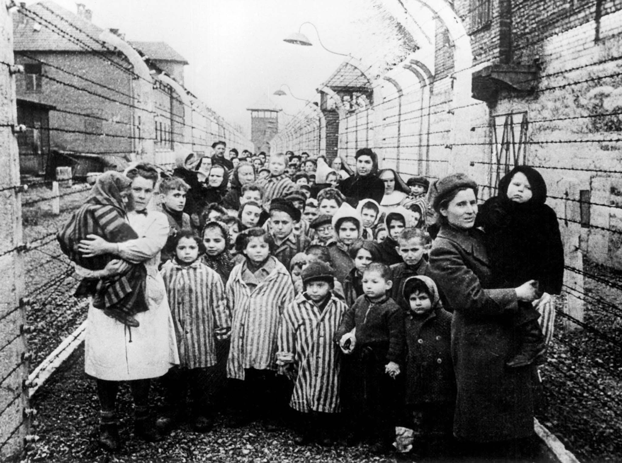 the role of concentration camps in the holocaust World war ii: the holocaust alan and continued in concentration camps where prisoners this photo provided by paris' holocaust memorial shows a german.