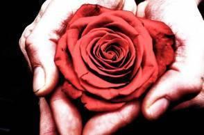 san valentino 294x194 San Valentino, cosa regalare alla vostra lei