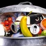 Expo: no allo spreco con Banco Alimentare e Caritas