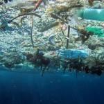 Inquinamento mari italiani: Legambiente lancia l'allarme