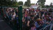 migranti-ungheria-6751-630x419