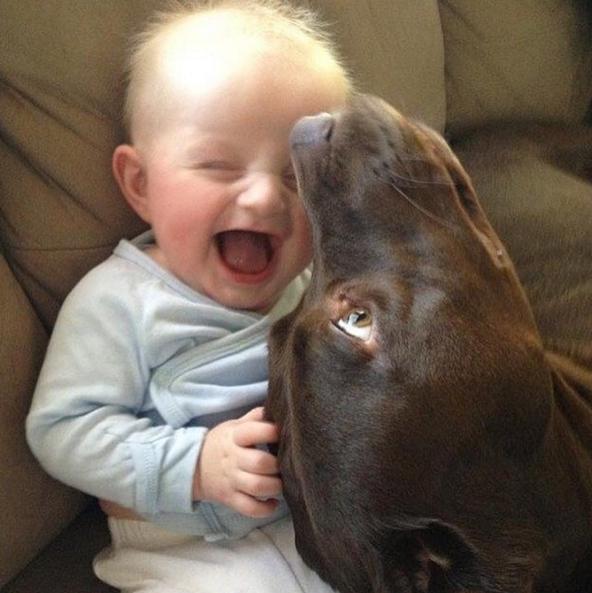 Bimbo e cane, divertimento estremo