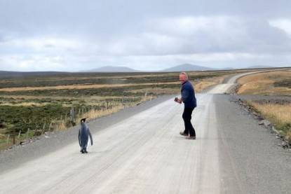 pinguino nel deserto