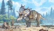 new-horned-dinosaur-cropped