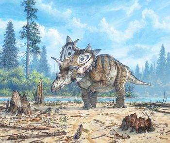 new-horned-dinosaur-cropped
