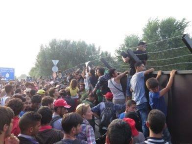 amnestyrifugiati