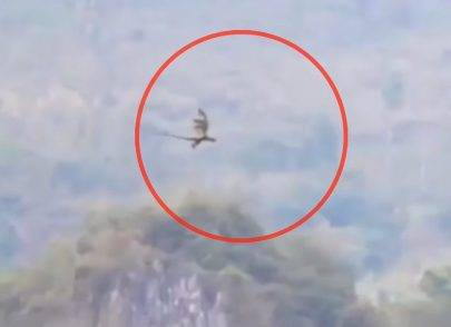 dragon-spotted-flying-over-mountains-in-china-is-it-real-or-fake-161017-00_00_05_20-still002-e1476711571927