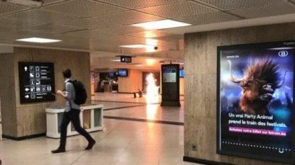 Bruxelles, ucciso sospetto terrorista