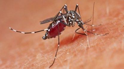 Le amputano piedi e un braccio dopo una puntura di zanzara