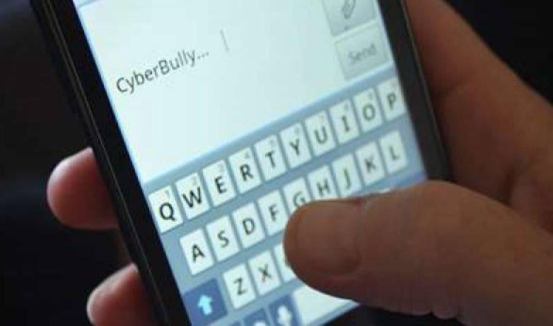 insulti ragazze su web