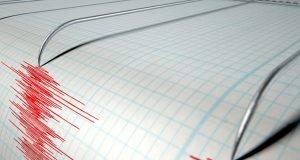 Tracciato del sismografo