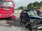 Panda contro camion incidente