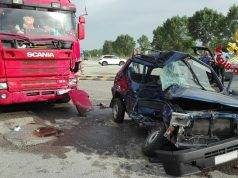 Panda contro camion incidente