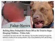 bulldog evira pedofilo, è fake news