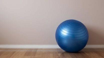 Medico fa strage in famiglia: figlia e moglie avvelenate con una palla da yoga