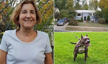 Esperta cinofila adotta pitbull in canile, poi la tragedia: ha firmato la sua condanna a morte