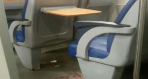 Ragazza di 20 anni aggredita sul treno reagisce al rapinatore: lui la accoltella