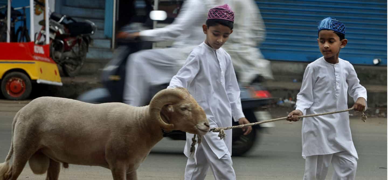 È stata depositata una legge contro la macellazione islamica ed ebraica: cosa cambia