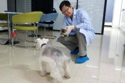 in Cina ci si prepara alla clonazione umana