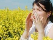 Allergie d'autunno