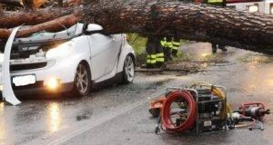 Dramma a Frosinone, albero uccide due persone