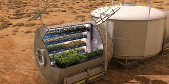 Coltiveremo mai del cibo sulla Luna?