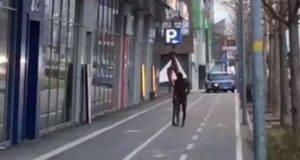 Bolzano choc, si denuda, distrugge decine di macchine a sprangate e picchia agenti: arrestato