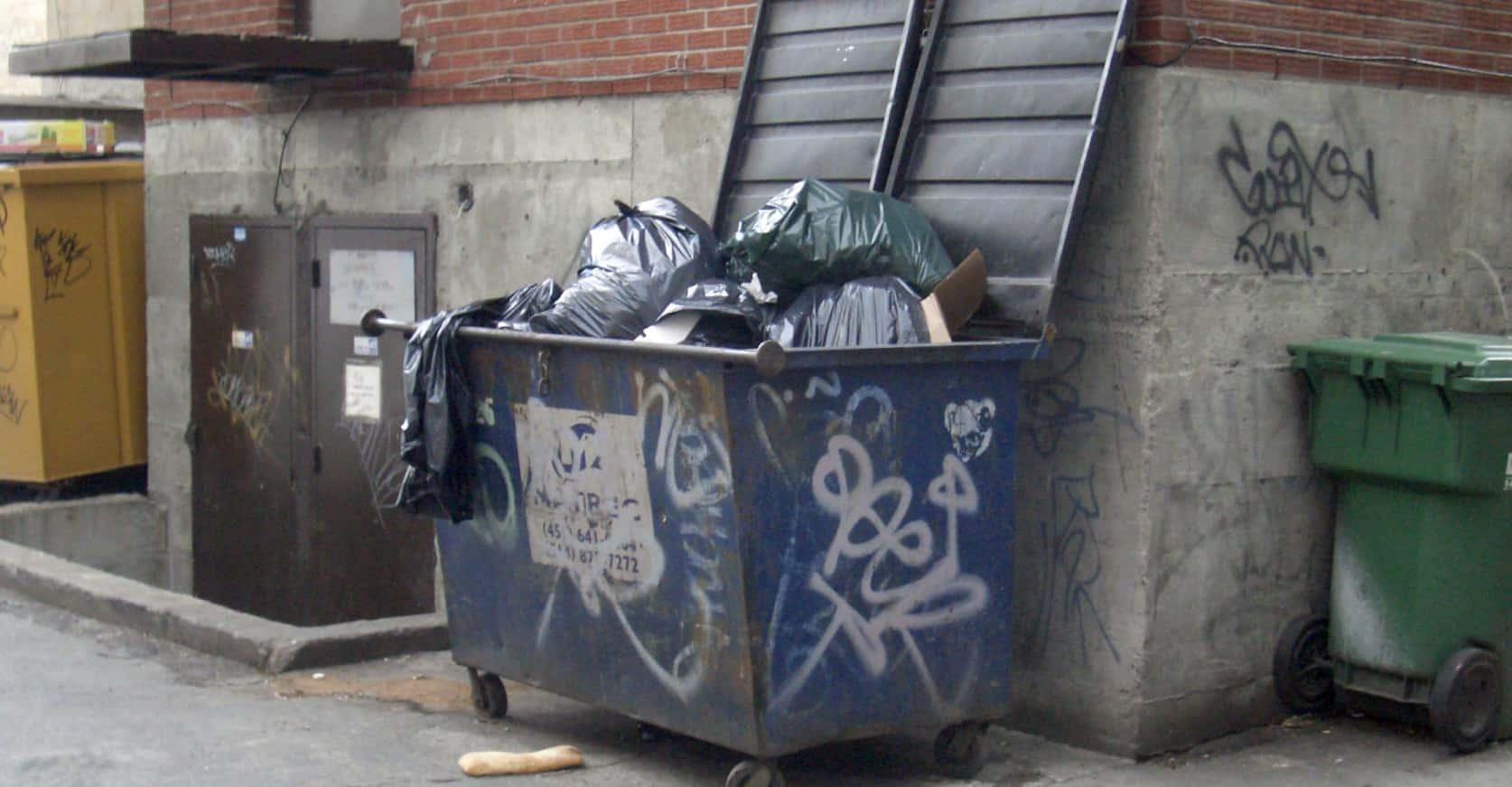 Caos rifiuti