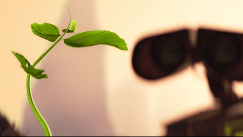 Nel film WALL-E una pianta cresceva sulla Terra deserta