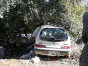 Muore di freddo nella sua auto a 53 anni: Ornella, la vagabonda che non voleva farsi aiutare