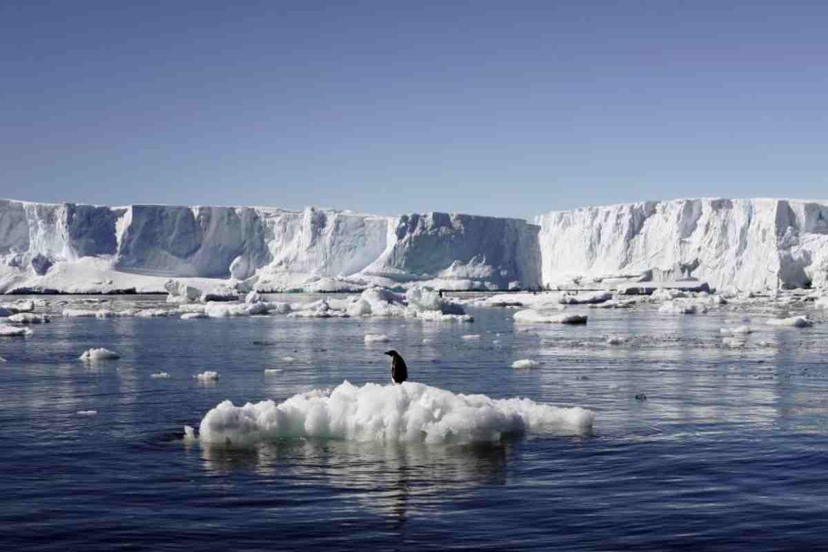 Global Warming, in Antartide il ghiaccio si assottiglia, 5 volte più velocemente che nei '90