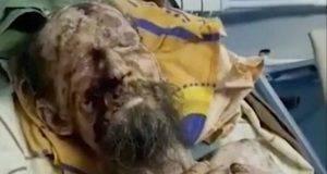 Mummia scoperta nella tana di un orso