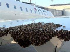 aereo api fiumicino