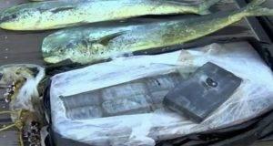 cocaina pescatori