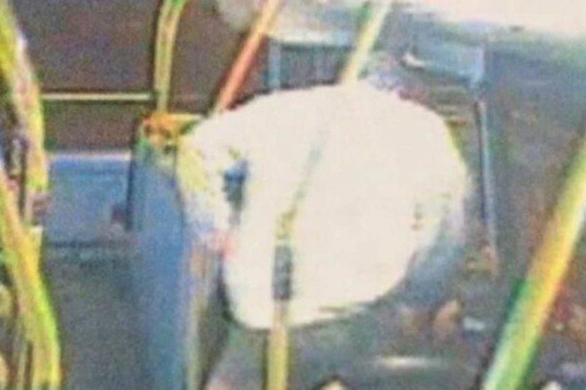 Passeggero defeca sul bus