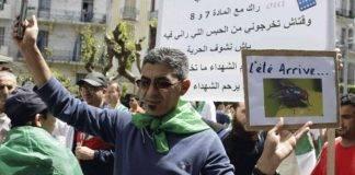 Proteste Algeria