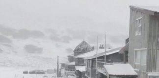 nevicata australia