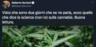 Tweet tra Burioni e Gasparri sulla cannabis