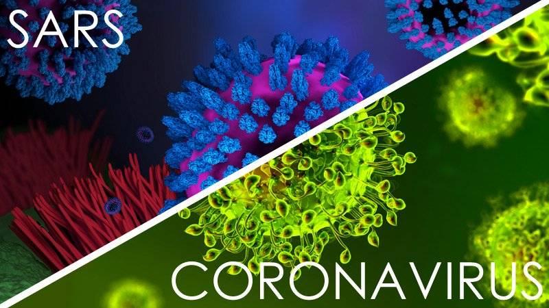 Coronavirus, uno studio smentirebbe la sua origine naturale: