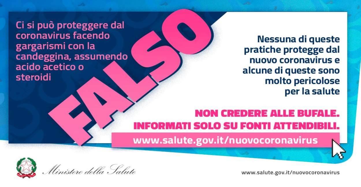 La fake news dei cinghiali in via Castiglione a Bologna