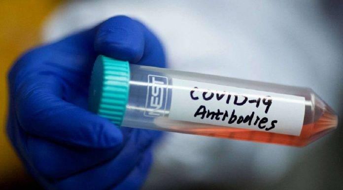 Coronavirus, pazienti sviluppano anticorpi