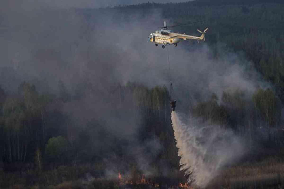 Scoppia un incendio nella foresta vicino la centrale di Cher