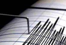 Immagine di un sismografo