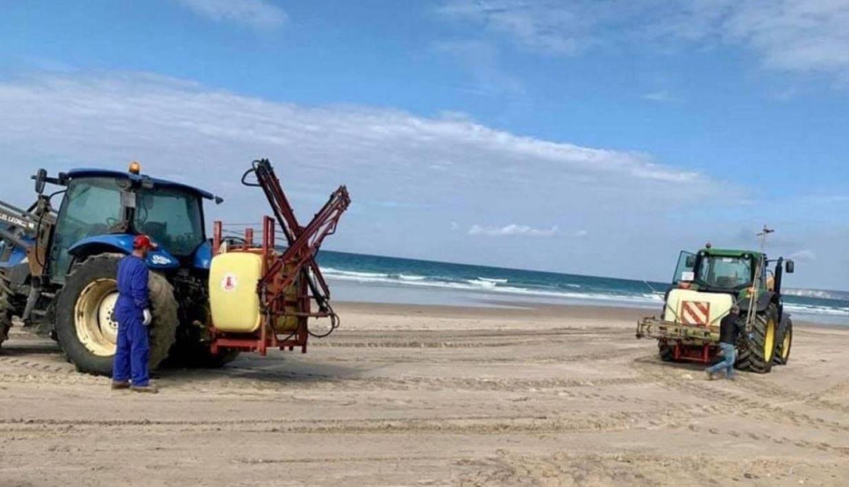 candeggina su una spiaggia
