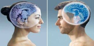 covid cervello