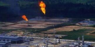 studio gravidanza e pozzi petroliferi