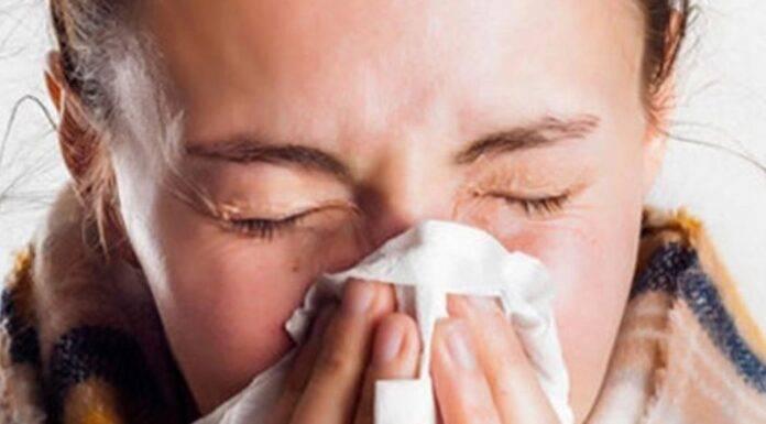 legame tra covid e raffreddore