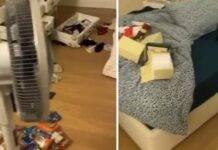 Le immagini del furto in casa di RIbery