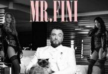 La cover di Mr Fini