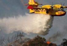 Sardegna, vasto incendio a Torpè